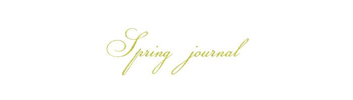 Springjournalwords