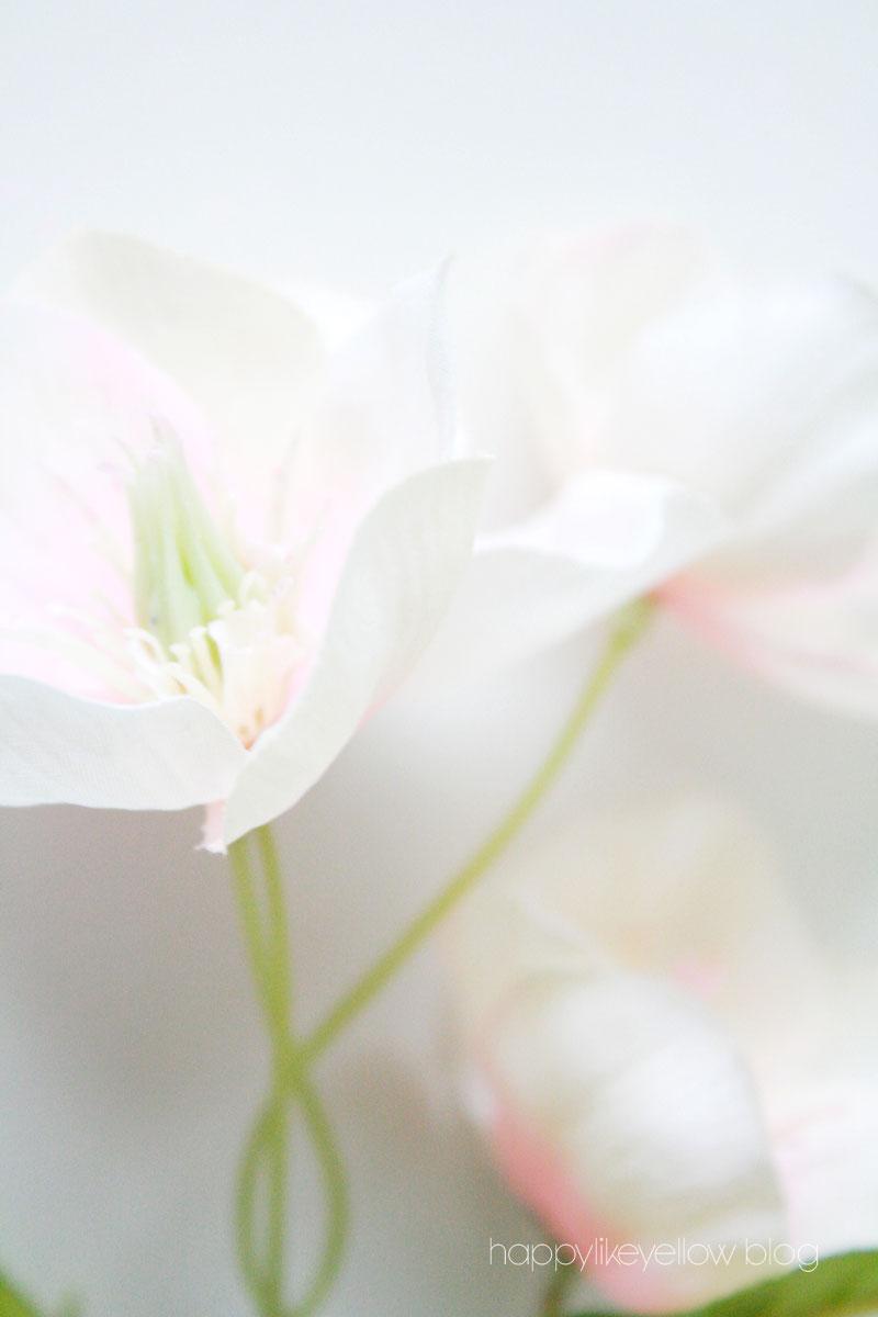 Hello-spring-3