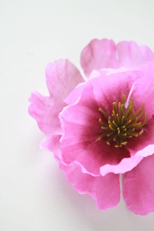 Floral-photo2