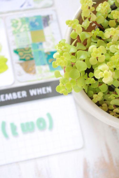 Garden-inspo9