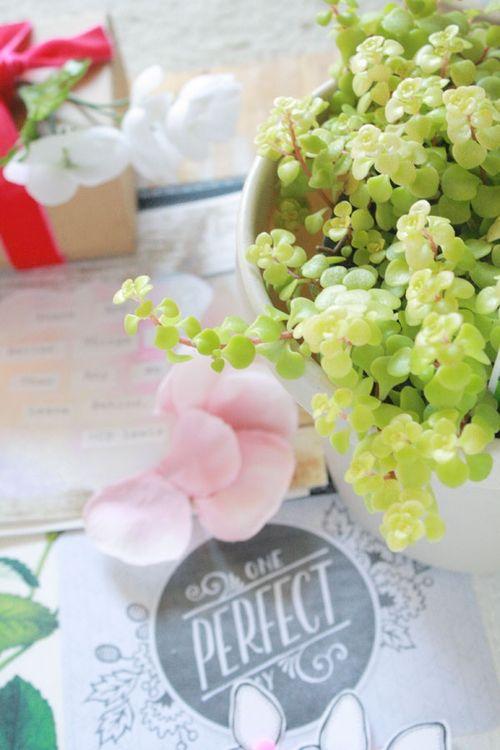 Garden-inspo1
