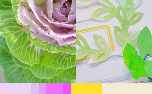 Color-inspo1